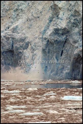glacier actif - Seward - Kenai péninsule