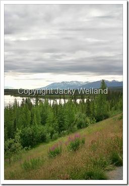 Lac près d'Anchorage