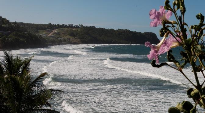 La Martinique en janvier